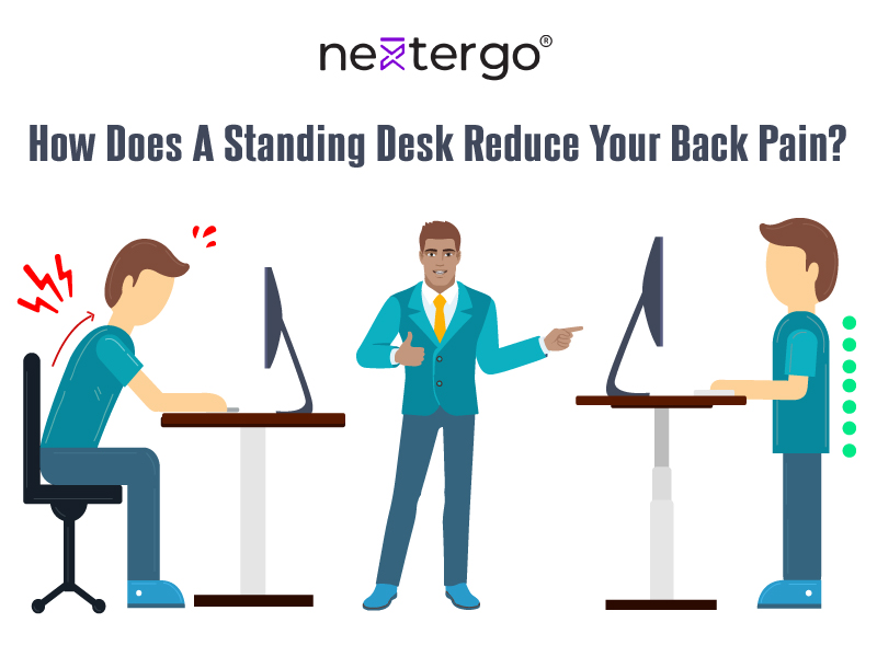 How Does A Standing Desk Reduce Your Back Pain?